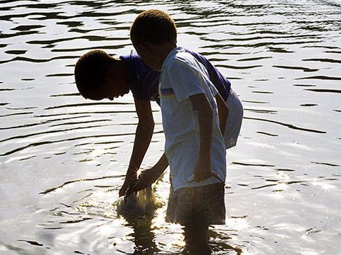 boys in river crop